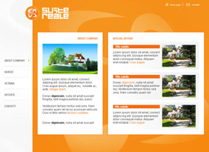 suite-reale web development